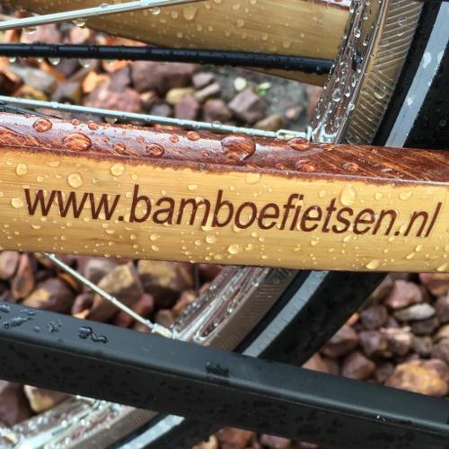 bamboe in de regen bamboefietsen.nl