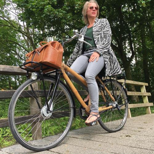 bamboe damesfiets met drager bamboefietsen.nl